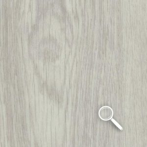 5_White Giant Oak